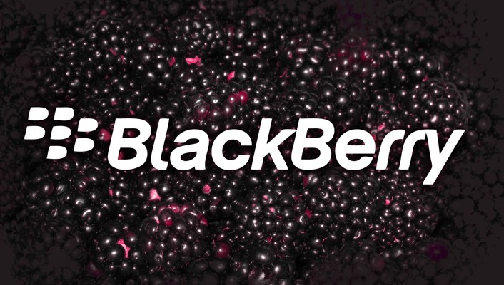 Black berry wallpaper