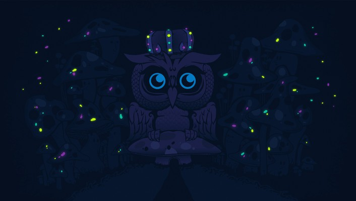 Dark night mushrooms glowing owls artwork desktopography wallpaper