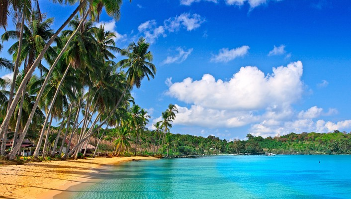Breathtaking polynesian beach wallpaper