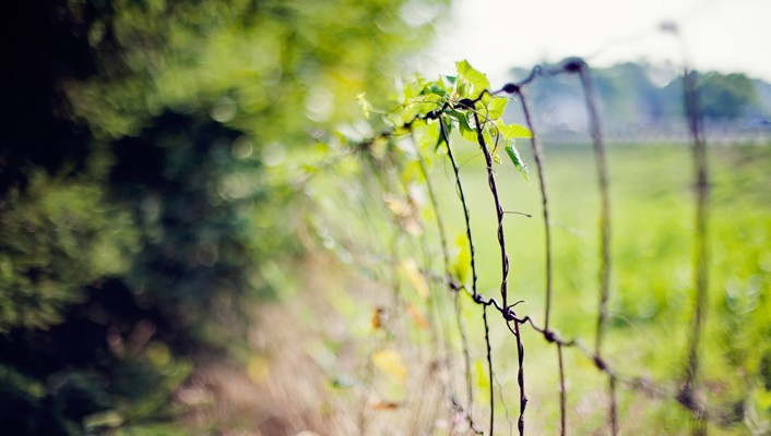 Nature fences bokeh depth of field wires wallpaper
