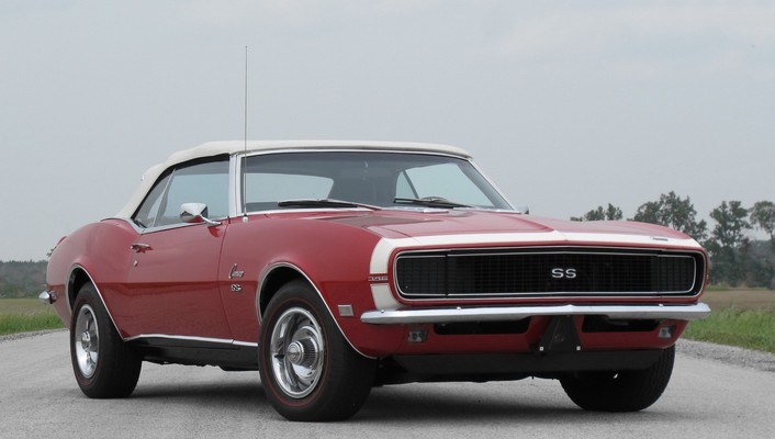 Chevrolet camaro ss cats muscle cars sports vehicles wallpaper