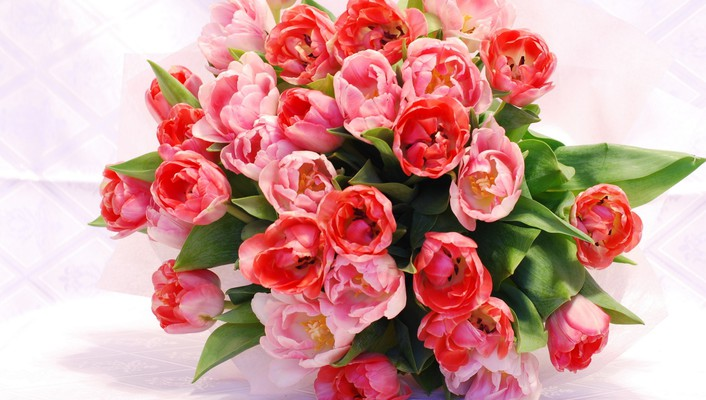 Amazing bouquet of tulips wallpaper