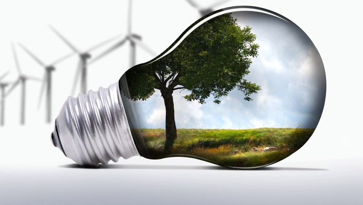 Light bulbs trees wind turbines wallpaper