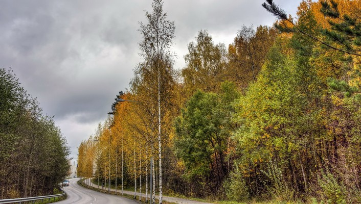 Landscapes nature trees roads autumn wallpaper