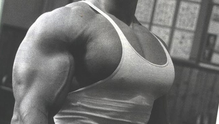 Men arnold schwarzenegger training wallpaper