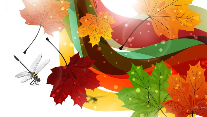 Dragonflies of fall wallpaper
