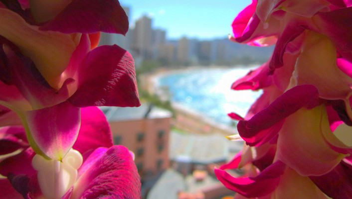 Hotel through orchid lei view vista island wallpaper