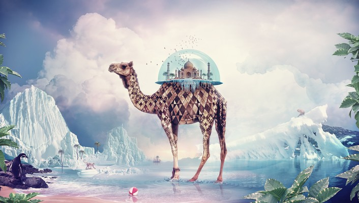 Taj mahal camels digital art surreal wallpaper