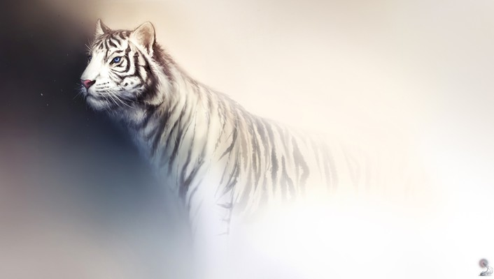 Tigers white tiger artwork background fade haryarti wallpaper