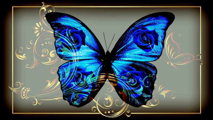 Butterfly blue jewelry wallpaper