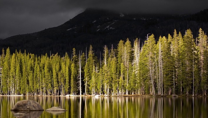 Landscapes nature trees forests lakes selective coloring wallpaper