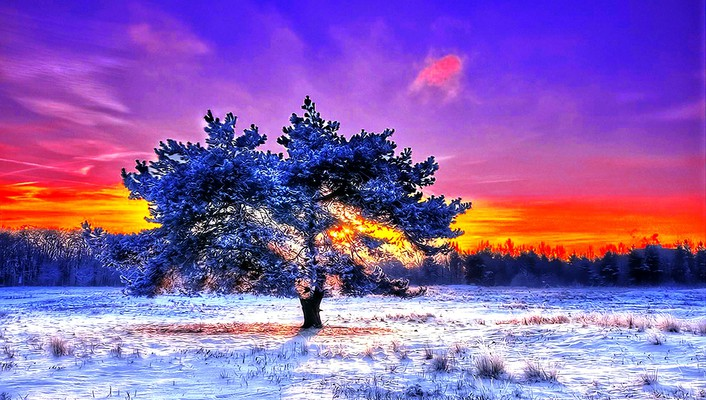 Alone in coldness wallpaper
