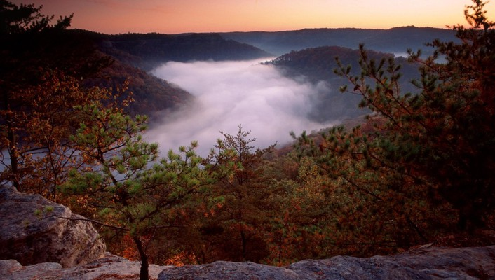 Landscapes forest red river foggy daniel boone national wallpaper