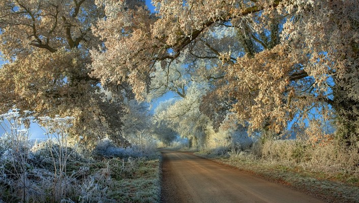 Amazin frosty road in the countryside wallpaper
