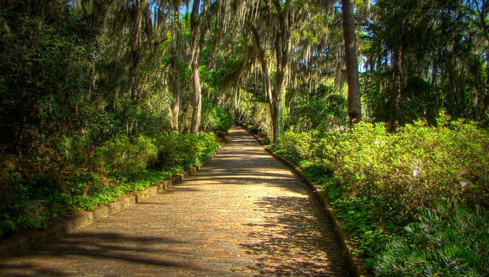 Mcclay gardens state park tallahassee florida wallpaper