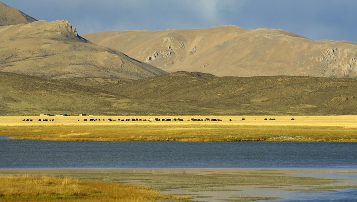 Tibet nature wallpaper
