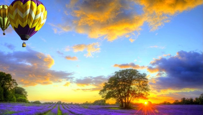 Landscapes fields sunlight hot air balloons wallpaper