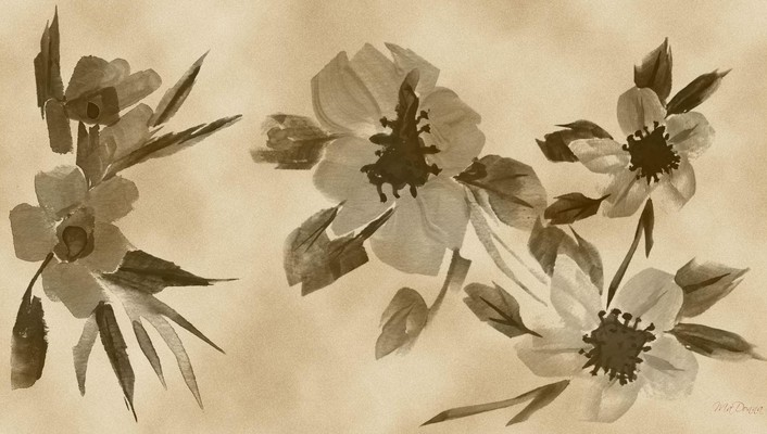 Flowers sepia digital art watercolor wallpaper