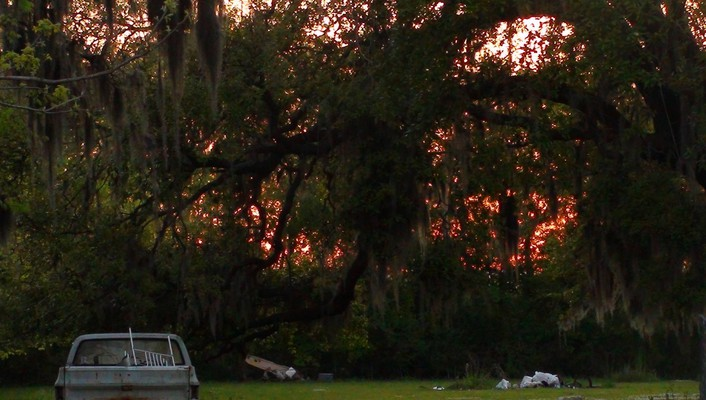 Sunset in bayou country wallpaper