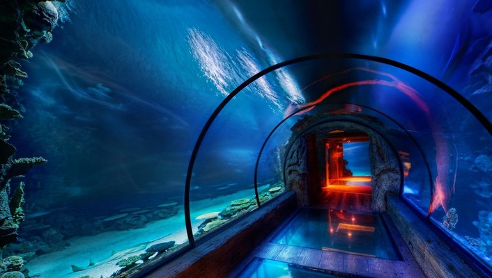 Underwater tunnel wallpaper