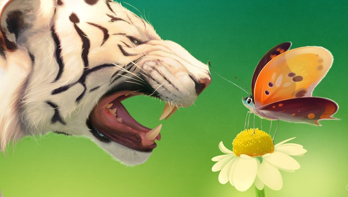 Tigers digital art artwork butterflies wallpaper
