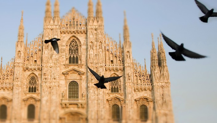 Italy pigeons cathedral wallpaper