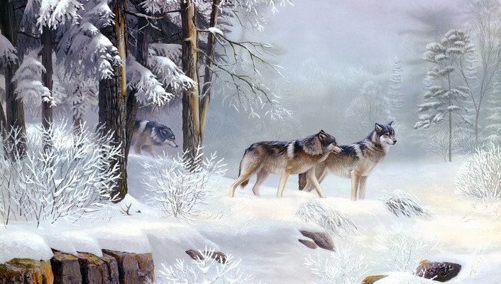 Winter snow animals wolves wallpaper