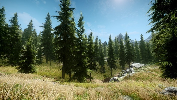 V: skyrim grass nature trees video games wallpaper