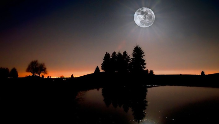 Landscapes trees moon silhouette wallpaper