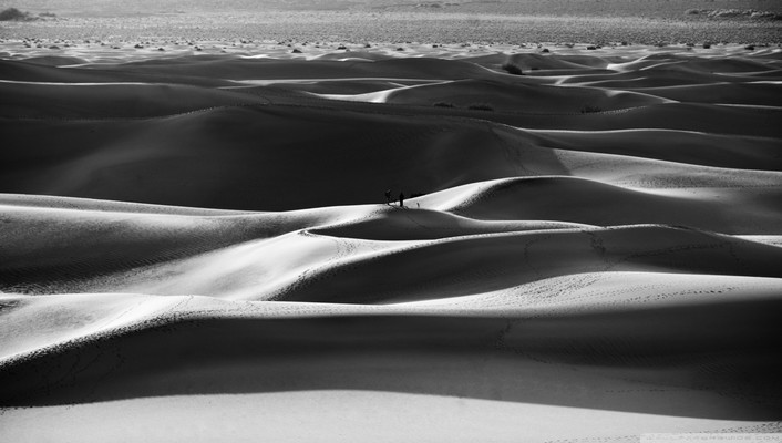 Black and white nature sand desert wallpaper