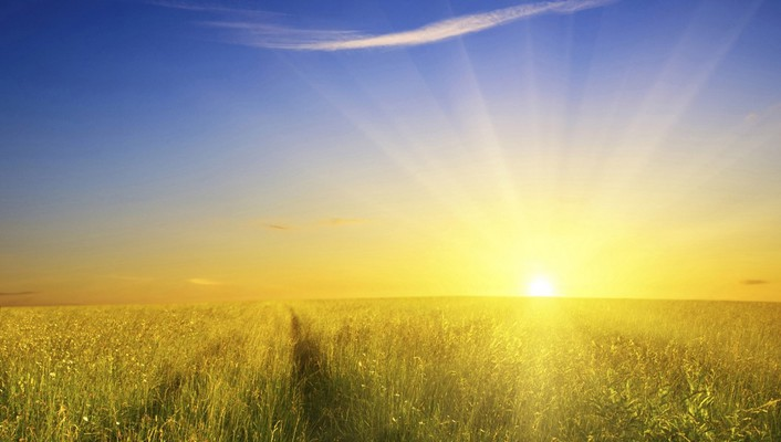 Grass field sunrise pictures wallpaper