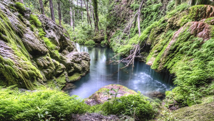 Hdr photography forests moss nature rivers wallpaper