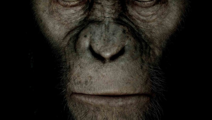 Rise of the planet apes animals wallpaper