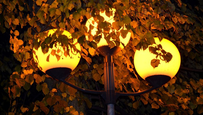 Lights in the autumn park wallpaper