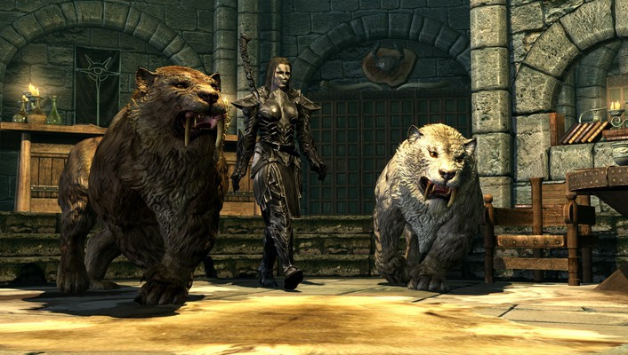 Cgi the elder scrolls v skyrim tigers wallpaper