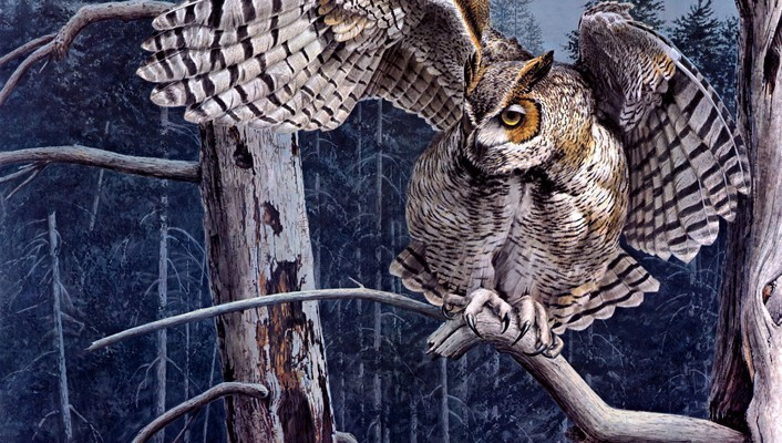 Guy coheleach artwork owls wallpaper