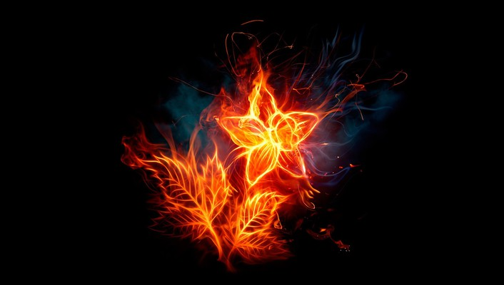 Abstract black background fire flower flaming wallpaper