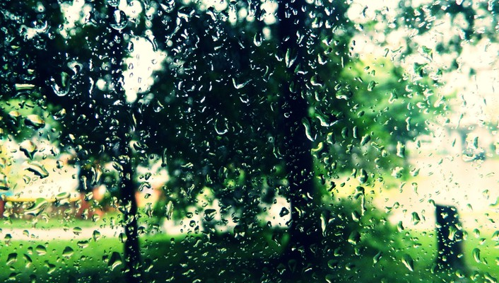 Rain water drops wallpaper