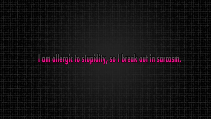 Quotes stupidity wallpaper
