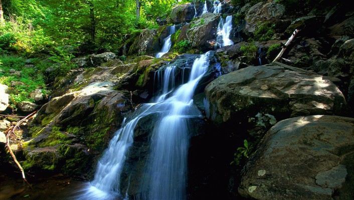 Nature forest waterfalls wallpaper