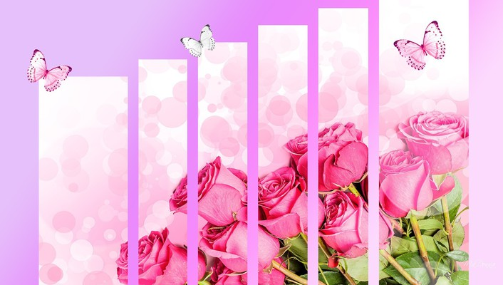 Roses so special wallpaper