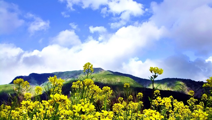 Mountains clouds landscapes flowers hills yellow skies wallpaper
