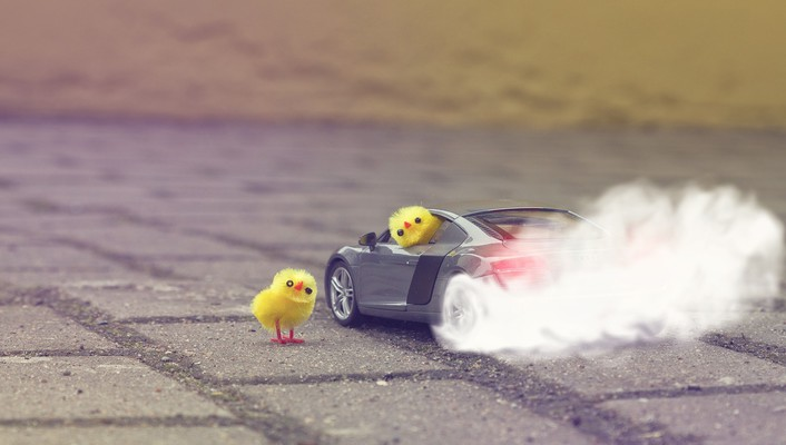 Audi r8 v8 burnout cars chickens wallpaper