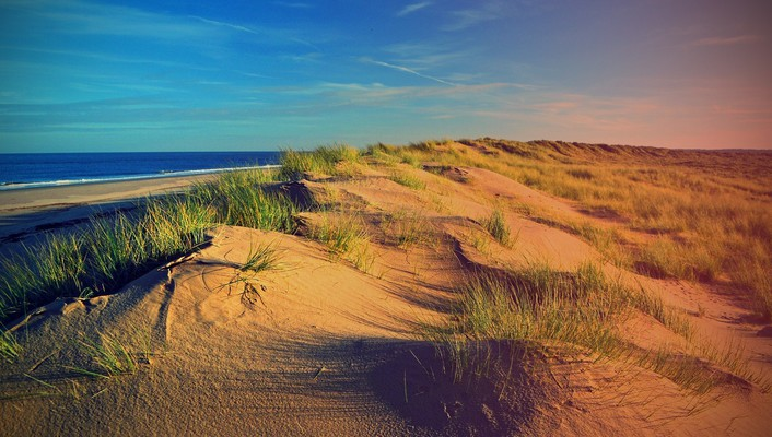 Beach dunes wallpaper