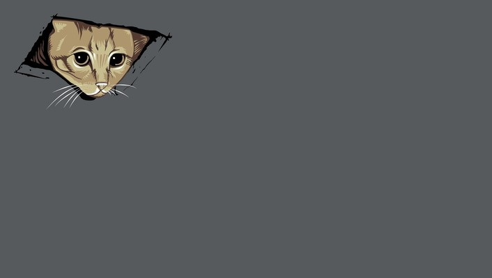 Abstract cats kittens simple simplistic wallpaper