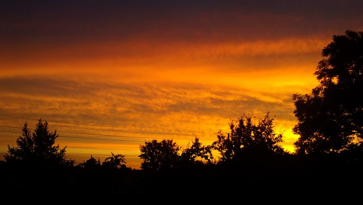 Morning skyscapes sunrise trees wallpaper
