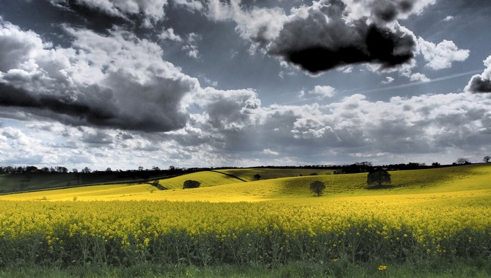 Clouds landscapes nature skyscapes yellow field wallpaper