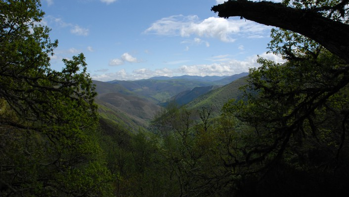 Asturias spain forests green landscapes wallpaper