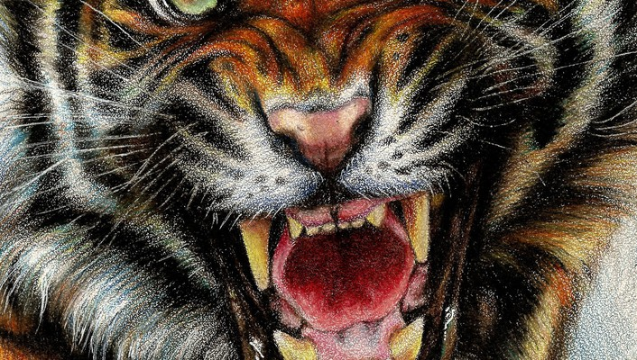 Animals digital art drawings paintings tigers wallpaper