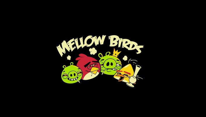 Angry birds funny tshirts wallpaper